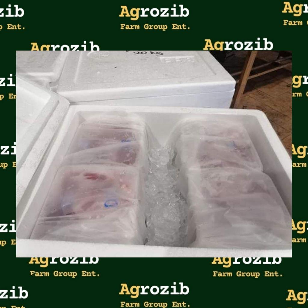 AGROZIB FARM GROUP (BRANCH KLANG)