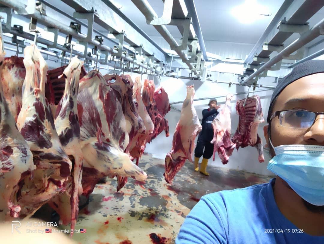 KLiA3_Fresh Meat